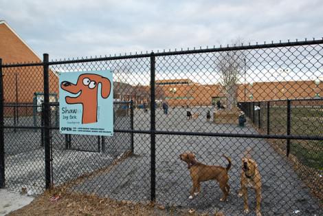 shaw-dog-park