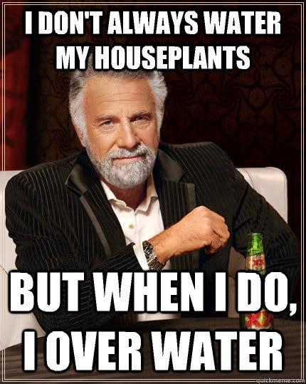plantmeme